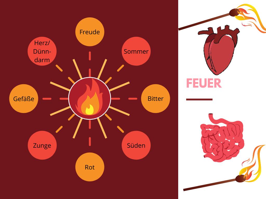 Dem Element Feuer werden die Freude, der Sommer, der Geschmack bitter, der Süden, die Farbe Rot, die Zunge, die Gefäße und die Organe Herz/Dünndarm und Perikard/Drei-Erwärmer zugeordnet.