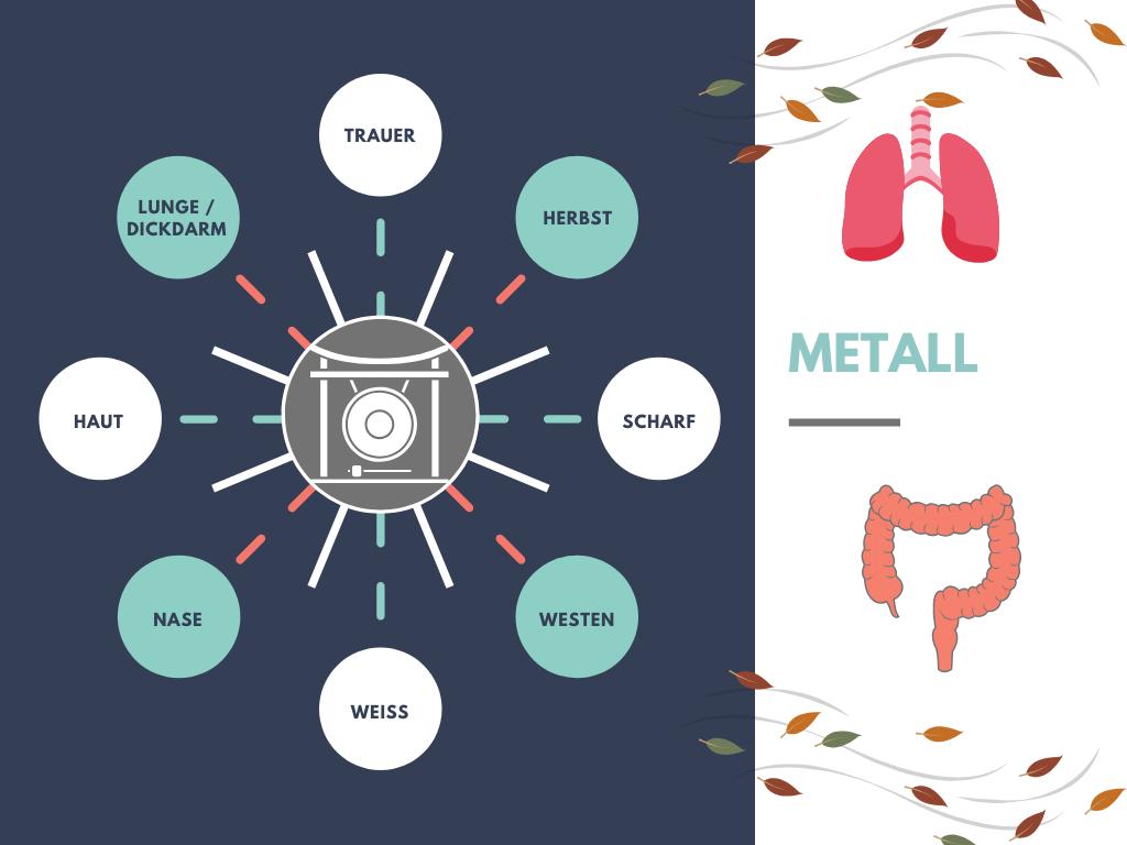 Dem Element Metall werden die Trauer, der Herbst, die Geschmacksrichtung scharf, der Westen, weiß, die Nase, die Haut und die Organe Lunge/Dickdarm zugeordnet.