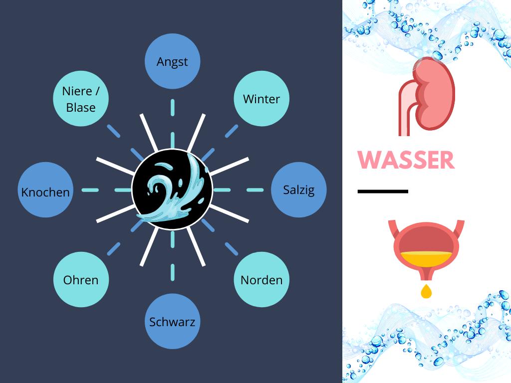 Dem Element Wasser sind die Angst, der Winter, der Geschmack salzig, der Norden, Schwarz, die Ohren, die Knochen und das Organpaar Niere/Blase zugeordnet.