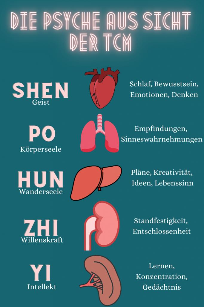 Die Psyche besteht in laut TCM aus 5 Teilen: Shen (Geist), Po (Körperseele), Hun (Wanderseele), Zhi (Willenskraft) und Yi (Intellekt).