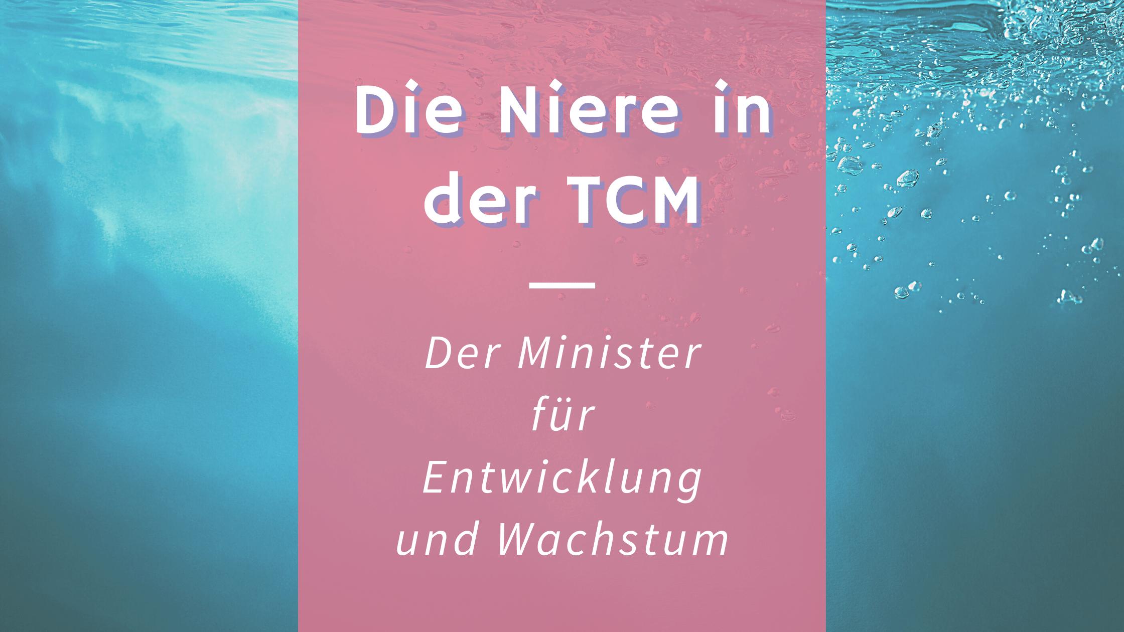 Die Niere in der TCM – Der Minister für Wachstum und Entwicklung